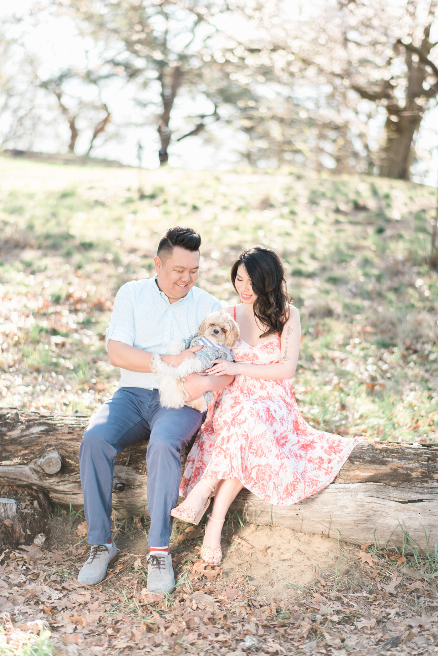 Engagement shoot with their dog