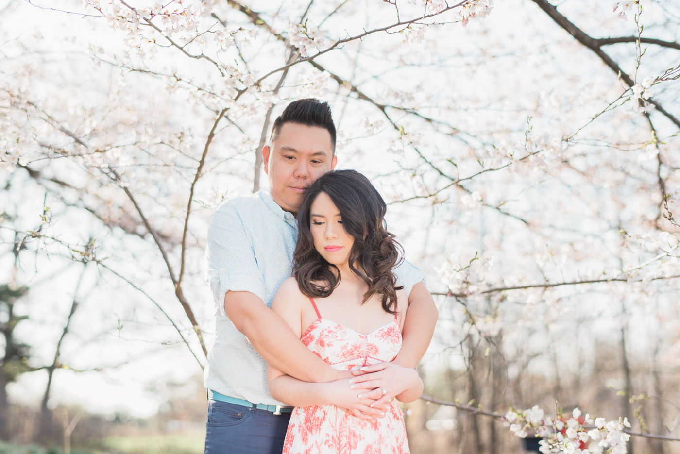 Engagement session with couple during cherry blossoms at High Park in Toronto