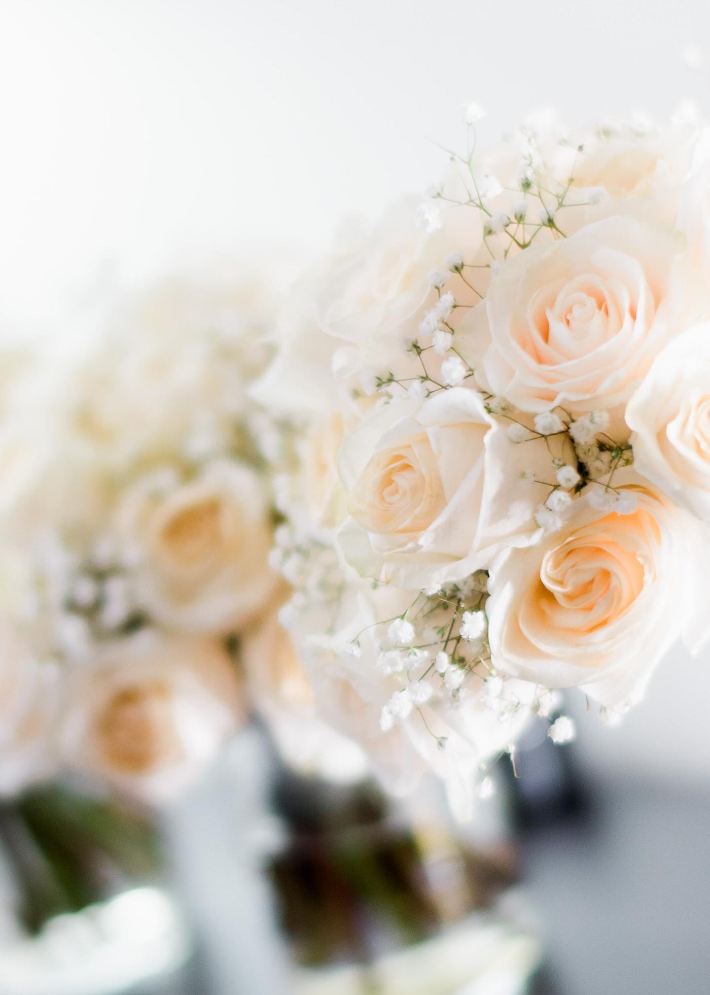 Macro shot of beautiful flowers