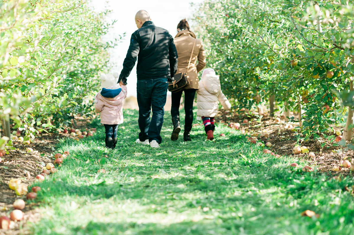 Family holding hands at apple orchard