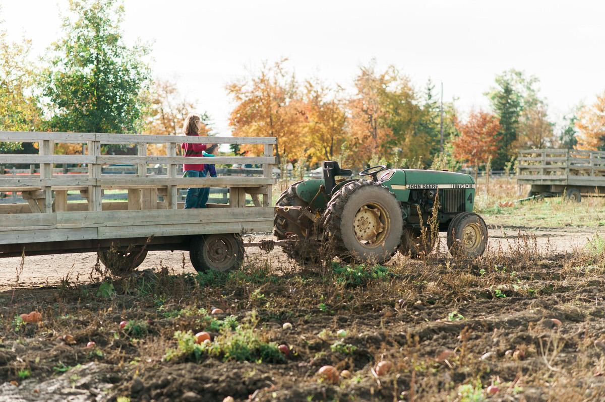 Tractor trailer at farm