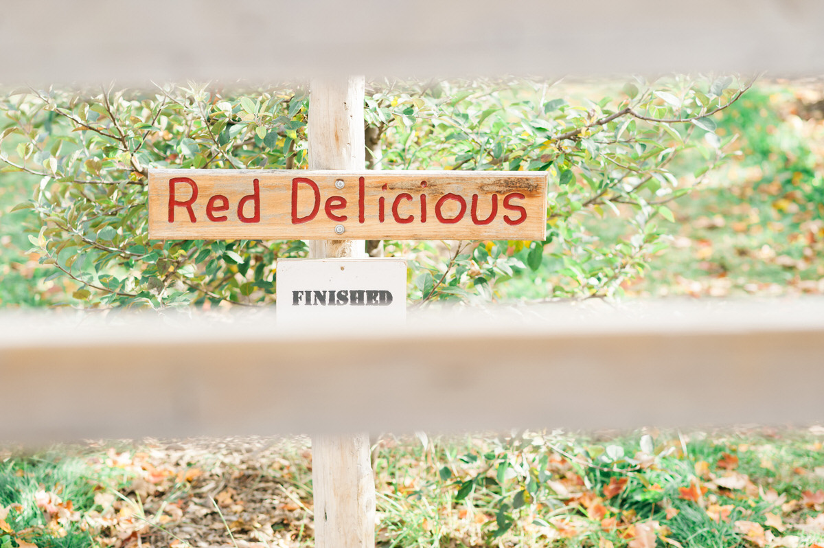 red delicious sign