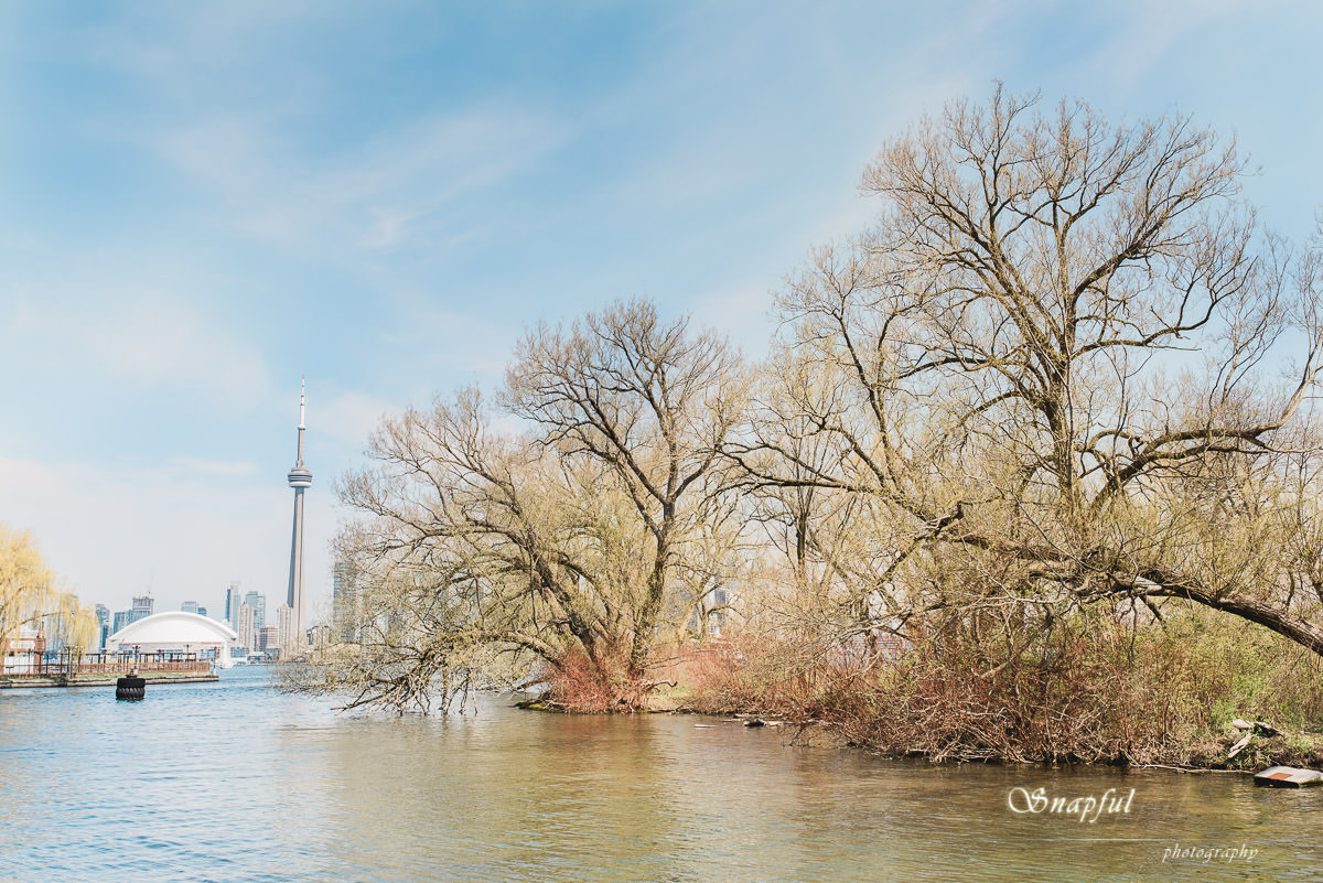 beautiful view of CN tower from Centre Island